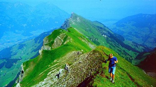 Giesigrat vom Aufstieg zum Sattelhorn