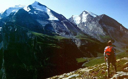 Balmhorn, Altels und Rinderhorn über der Spittelmatte vom Gällihorn-Gipfel