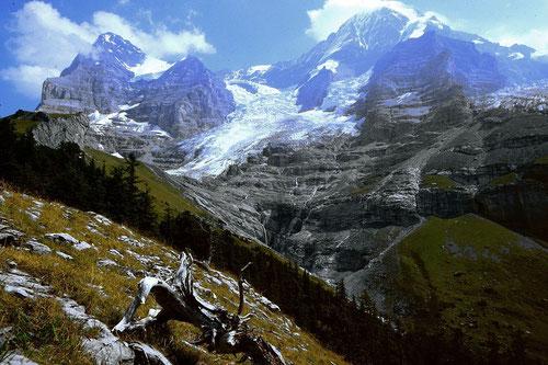 Eiger, Eigergletscher und Mönch vom Höhenrücken bei der Biglenalp