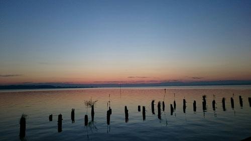 朝の澄んだ空。日の出と共に、水鳥たちも太陽の方に向かっていく。毎日見てきた光景だが、毎日違う光景だというのを多くの人は気が付かない。というより、朝の忙しさに負けて、自然が作り出す朝の光景に見向きもしない人がほとんどだと思う。本当にもったいない。