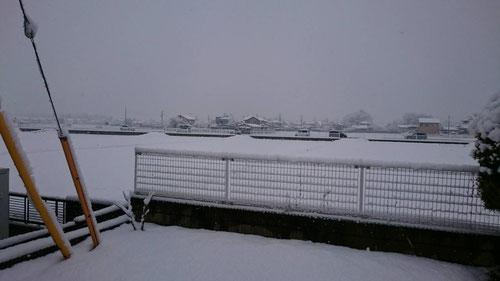 自宅付近ですが、いや~、今日も降ったな~。先週には及ばないが、降りましたね。今年に入ってこのような雪が2回目。いつもなら雪は1,2度くらいの小雪くらいしか降らないのに、、、まさか、ホントに氷河期に入っていくのか!?