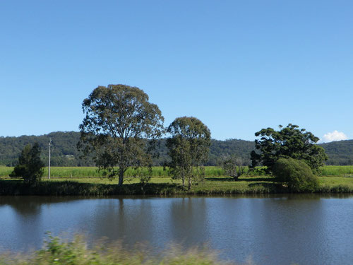 Driving along the river towards Ballina