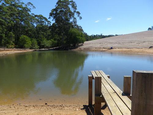 The farm dam