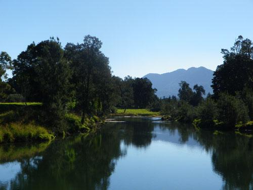 Bellingen River