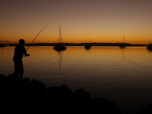 Some random fishing at Iluka