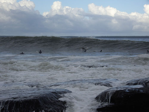 Surfers at Huskisson