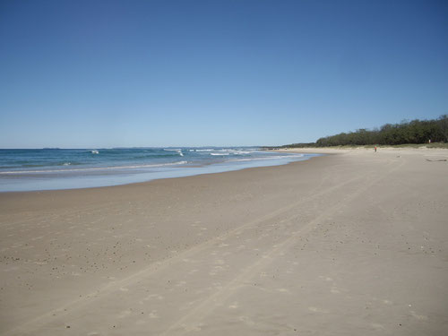 Pottsville Beach