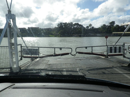 The Tailem Bend ferry