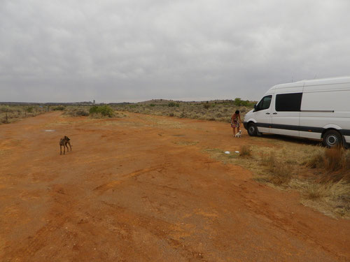 Freecamp outside Broken Hill