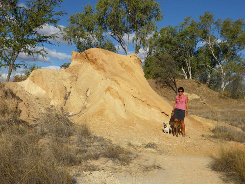 A big termite mound at the camp site