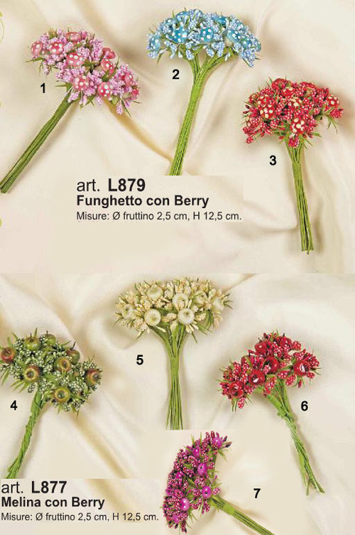 fiori con funghetti