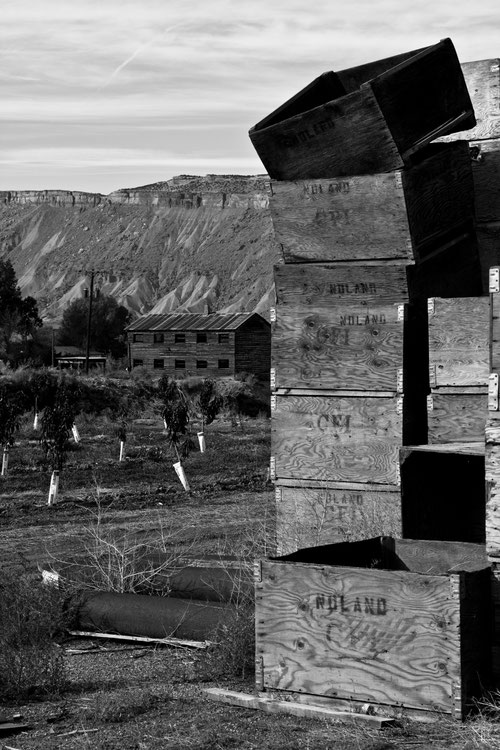 Old wooden crates stacked up in front of an old wharehouse in grand junction colorado black and white picture photography looks abandoned