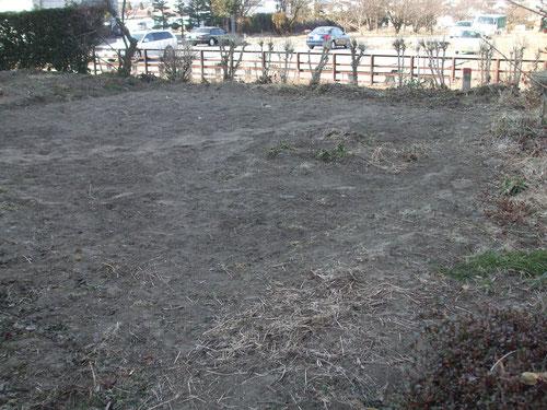 ネギ畑のあと、地面凍っています。スコップが全くささりません