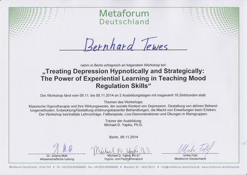 Zertifikat Dr. Michael Yapko