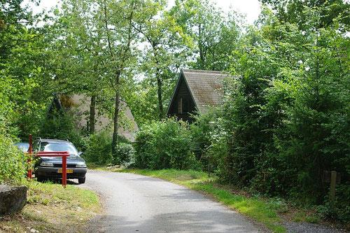 Weg door het park in de Ardennen
