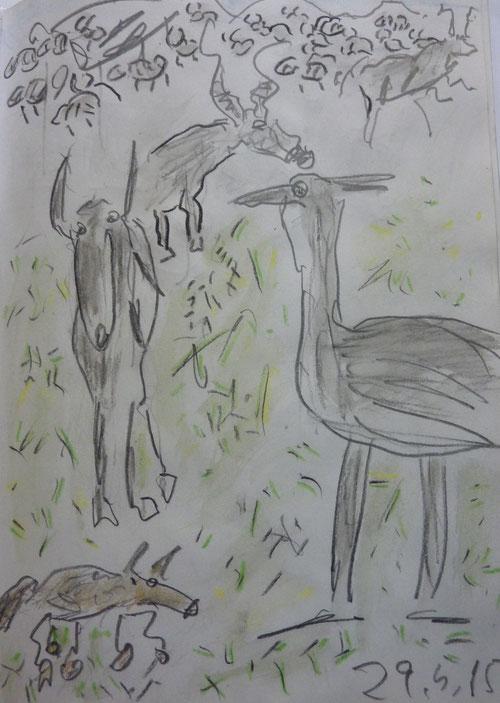 Tiere der Serengeti