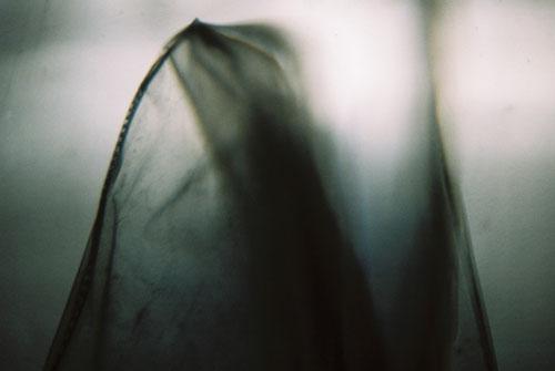 YLOP- LYOHM ©stephan brenn