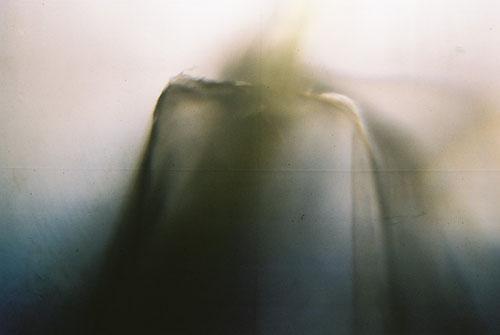 YLOP-HONYM©stephan brenn