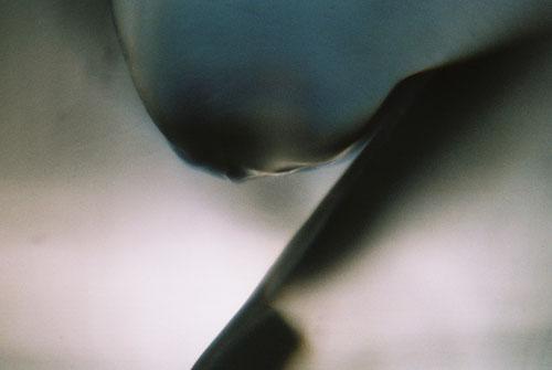 YLOP - CRYPOLL ©stephan brenn