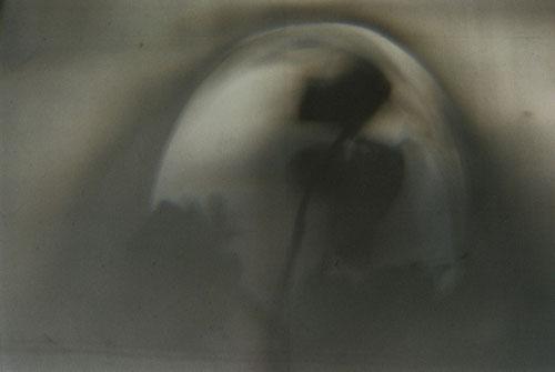 YLOP - PADMEH©stephan brenn