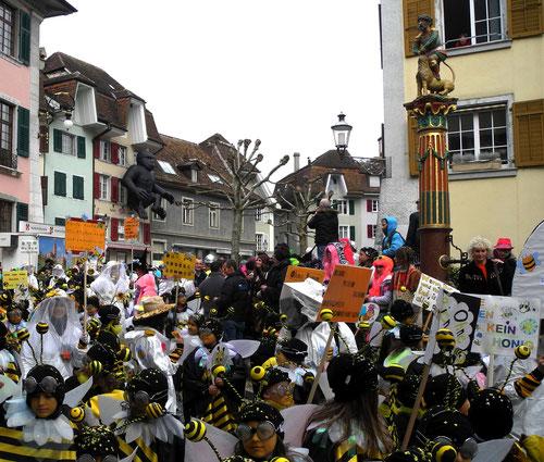 fotos chinnerumzug solothurn 2014