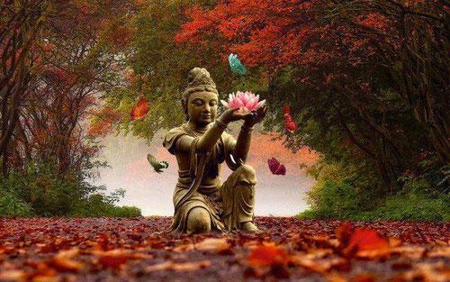 Visionsaufstellung Buddha