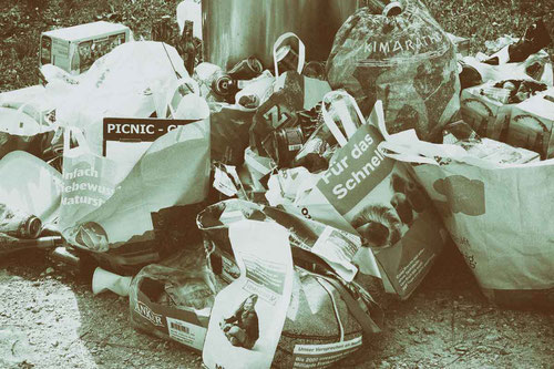 Krähen werden durch Müll angezogen
