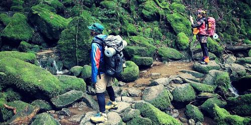 10月おすすめの【女性限定】縄文杉・白谷雲水峡1泊ツアー 静かな苔の森を堪能できます。