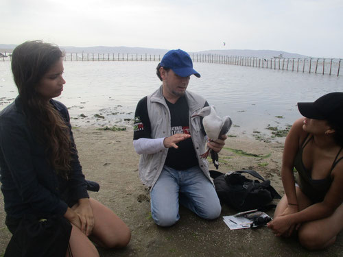El módulo de manejo y rescate de la biodiversidad marina en Paracas (Perú) con el ornitólogo Guillem M. Chacon