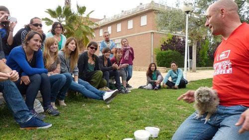 El Diplomado en Rehabilitación de Fauna en la Universitat de València