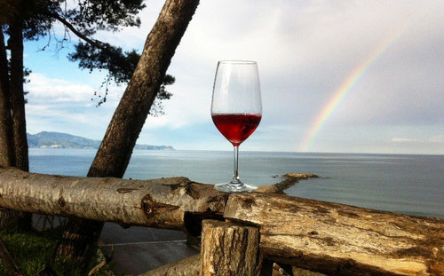 Виноделие на Коста Брава, погреба на Коста Брава, каталонские вина, испанское вино