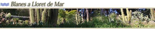 бланес вилла, дача в бланес, туристические апартаменты в бланес, пляж бланеса, моер в бланесе, побережье бланеса