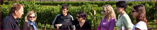 LIS NERIS - Vini Della Valle
