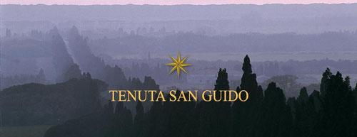 Sassicaia - Vini Della Valle