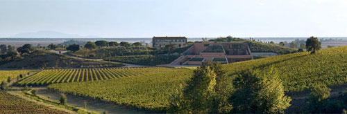 Antinori - Vini Della Valle