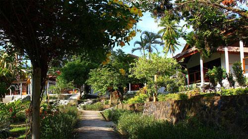 Thalassa Dive Resort in Manado, Sulawesi - Indonesia (Photo by Thalassa Dive Resorts)