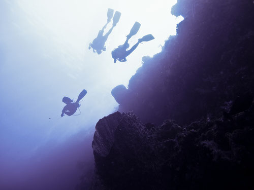 Immersione in parete a Bunaken, Sulawesi - Indonesia (Photo by Gabriele Ferrando)