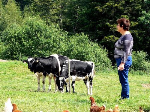 gite Alsace, gites, gite, Alsace, tourisme, vacances à la ferme, vacances, vaches, nature, calme, terroir, authentique, charme, kaysersberg, station du lac blanc, orbey, sentier pied nu, bike parc, ro