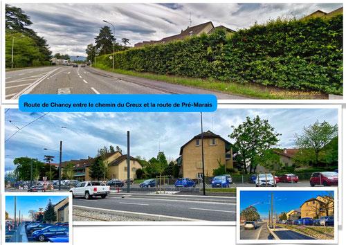 Haie non remplacée entre le chemin du Creux et la route e Pré-Marais Cliquez sur l'image pour l'agrandir