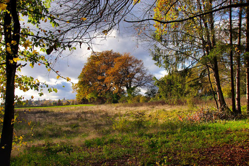 Paysage d'automne dans le secteur de Sur-le-Beau