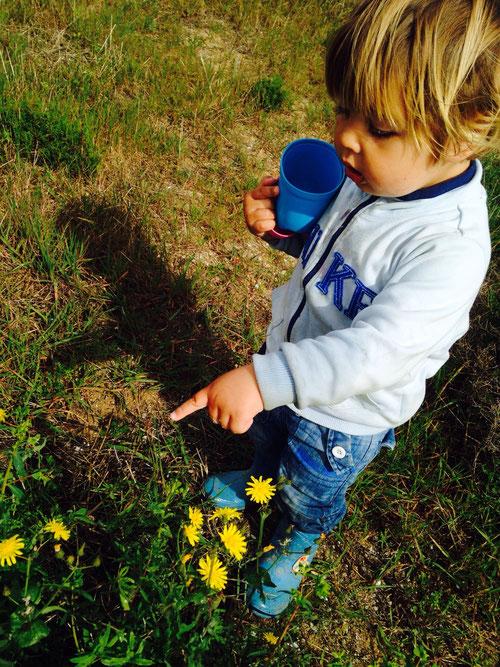 Hugo und seine Liebe für Blumen