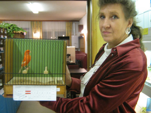 Zucht Kollegin Gerti Oelzelt mit ihren Rot B weißflügel 91 Pkt