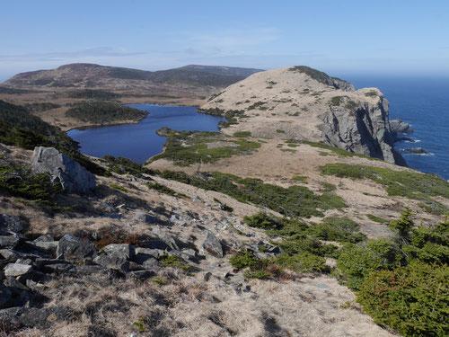 Le Cap de Miquelon