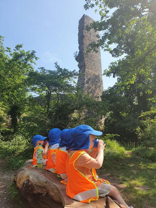 Unser Waldtag führte zur Tomburg 😃