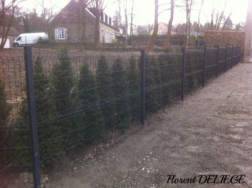 aménagement extérieur parc et jardin plantation clôture terrassement pavage