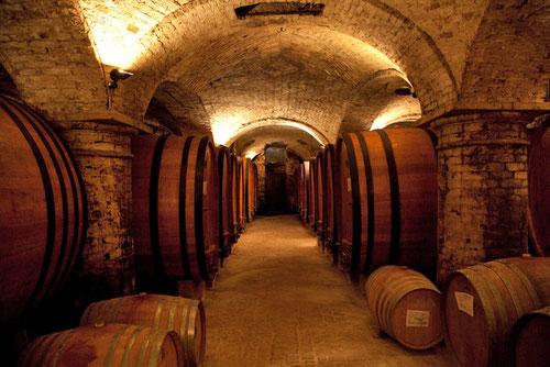 дегустации вин тоскана италия