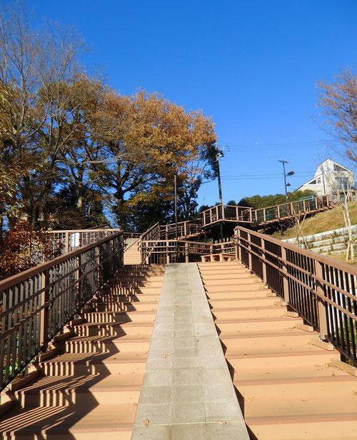 12月6日(2013) 国分寺崖線の階段:武蔵野公園(小金井市)