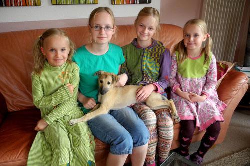 Antero mit seinen Mädels. Umzug am 17. August 2014 zu Familie Mispelbaum nach Tellingstedt. Wir freuen uns sehr, dass unser Kleiner bei uns in der Nähe bleibt.