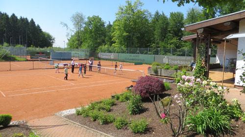 Der Tennisclub Rot-Weiß Flammersfeld hat in beispielhafter Eigeninitiative eine wunderschöne Anlage geschaffen und, was fast noch wichtiger ist, über all die Jahre gut erhalten.