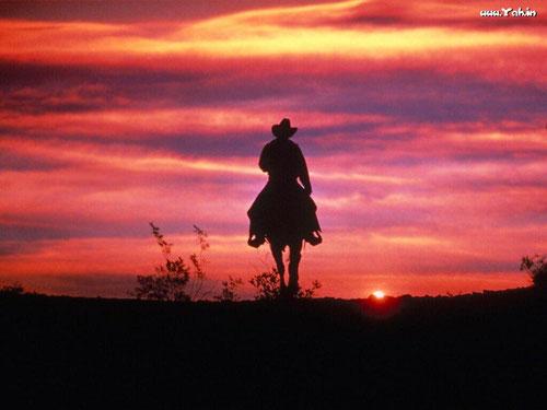 http://luxcu.com/wp-content/uploads/2014/01/ridinghorseintosunset.jpg